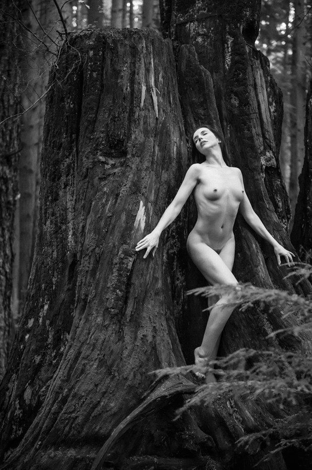 Forest Spirit Artistic Nude Photo by Model Gingersnap Pixie