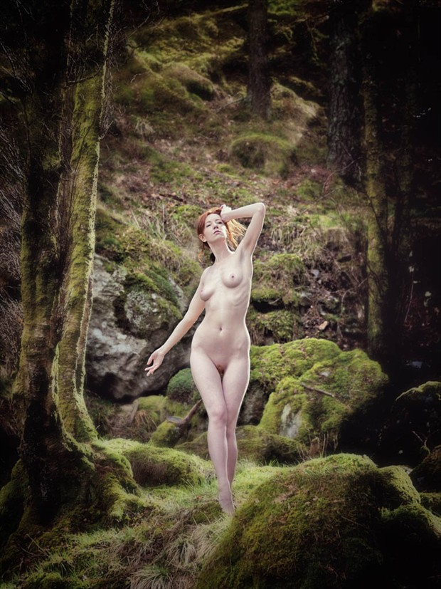 Forest Spirit Nature Photo by Photographer Rascallyfox