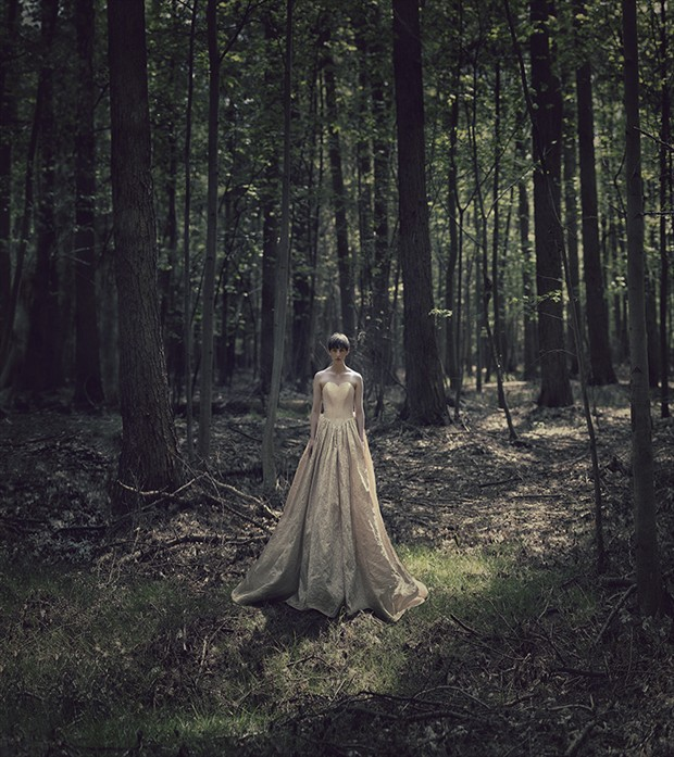 Forest wedding Nature Photo by Photographer profilepictures