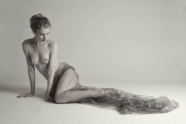 Fredau and Organza Artistic Nude Photo by Photographer Rascallyfox