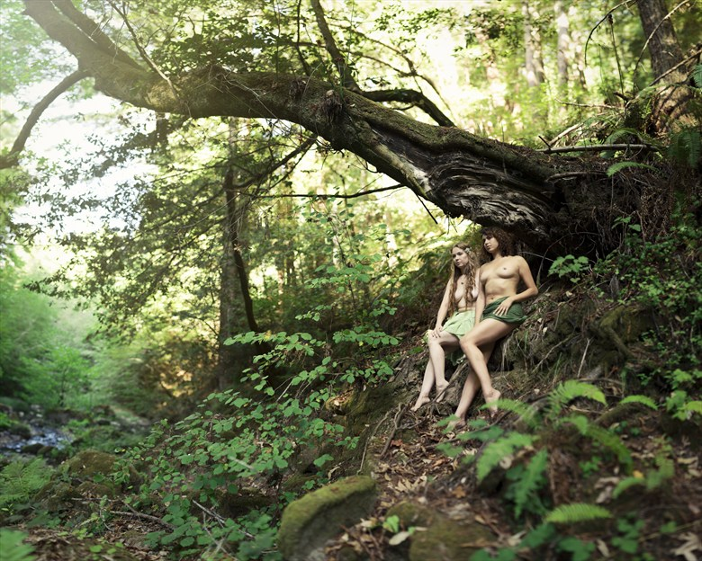 Freedom amongst Fae Artistic Nude Artwork by Model AnudeMuse