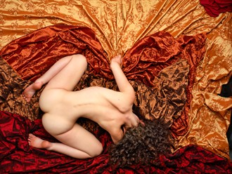From above Artistic Nude Photo by Photographer Lumin