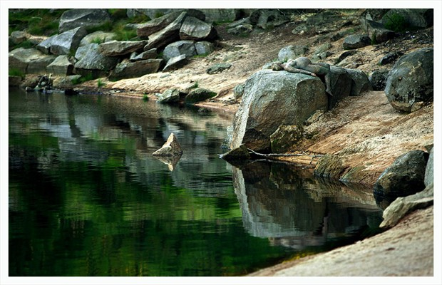 Gaia Nature Photo by Photographer Laila Pregizer
