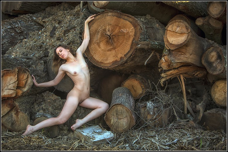 Garularoo at the Woodpile Artistic Nude Photo by Photographer Magicc Imagery