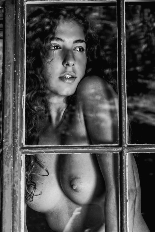 Gazing Upon the World Artistic Nude Photo by Photographer Philip Turner