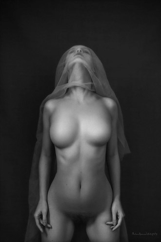 Geiger Artistic Nude Photo by Photographer Andrew Harewood