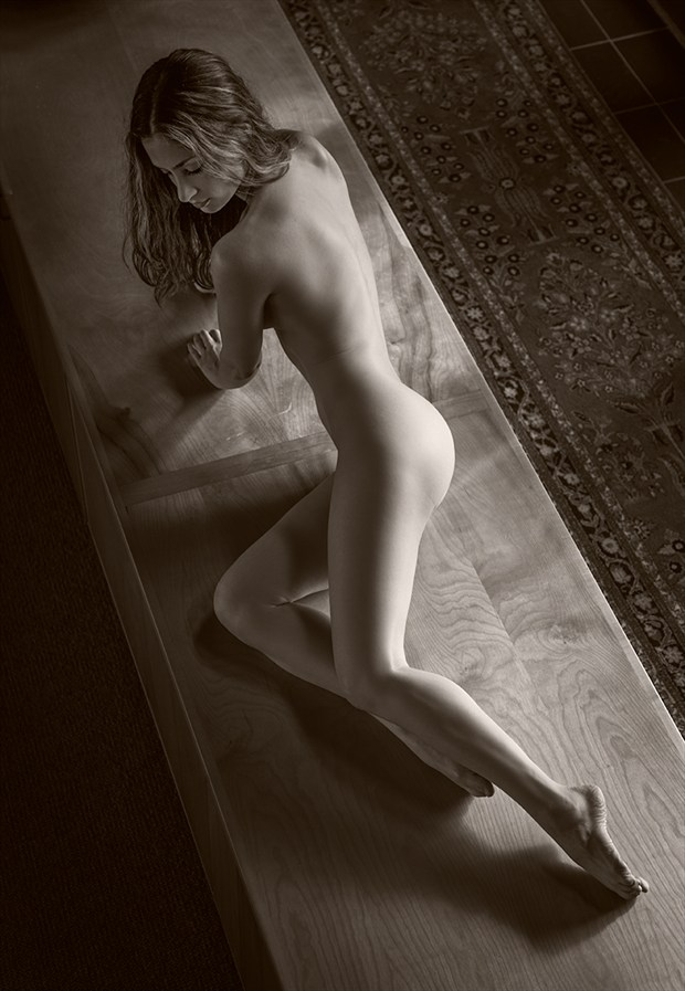Gentle Artistic Nude Photo by Photographer Dan West