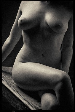 Gina on wood bench Artistic Nude Photo by Photographer stephen ehre