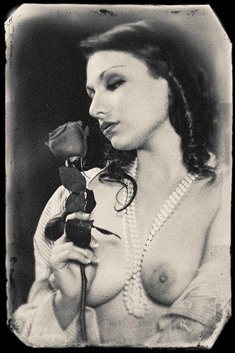 Gina with rose Artistic Nude Photo by Photographer stephen ehre