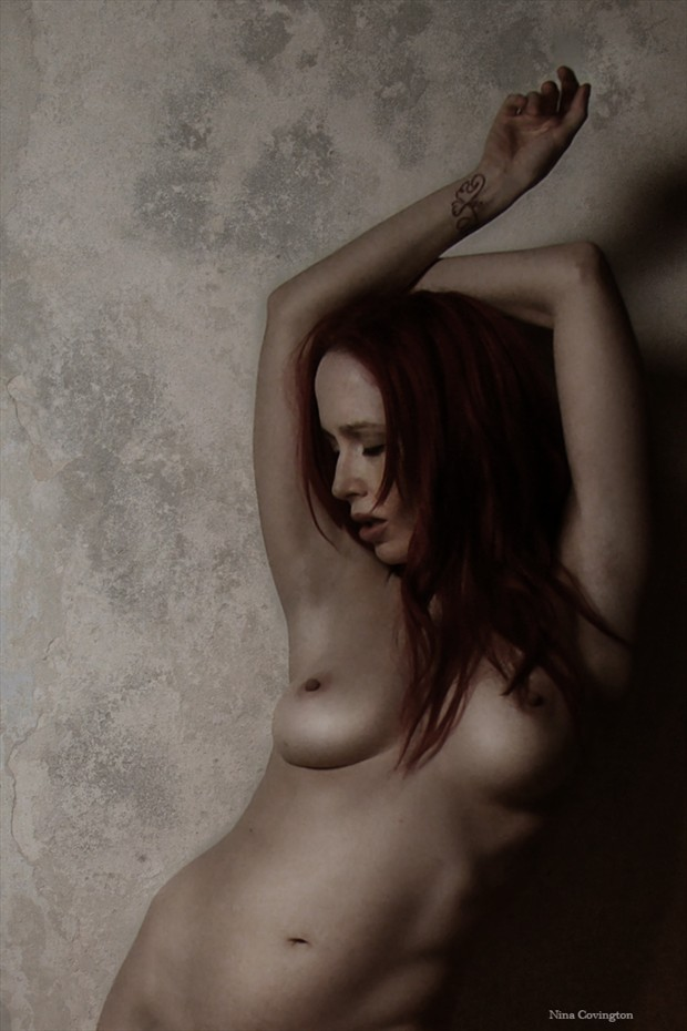 Give In Artistic Nude Photo by Model Nina Covington