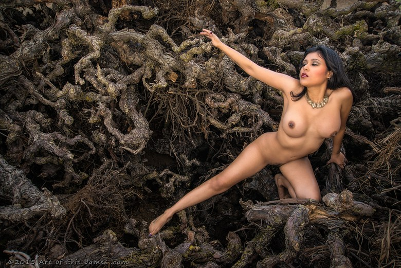 Gnarly Glamour Artistic Nude Photo by Photographer ArtofEricJames.com
