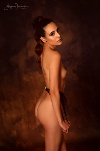 Gold Tones Artistic Nude Artwork by Photographer Photowerk