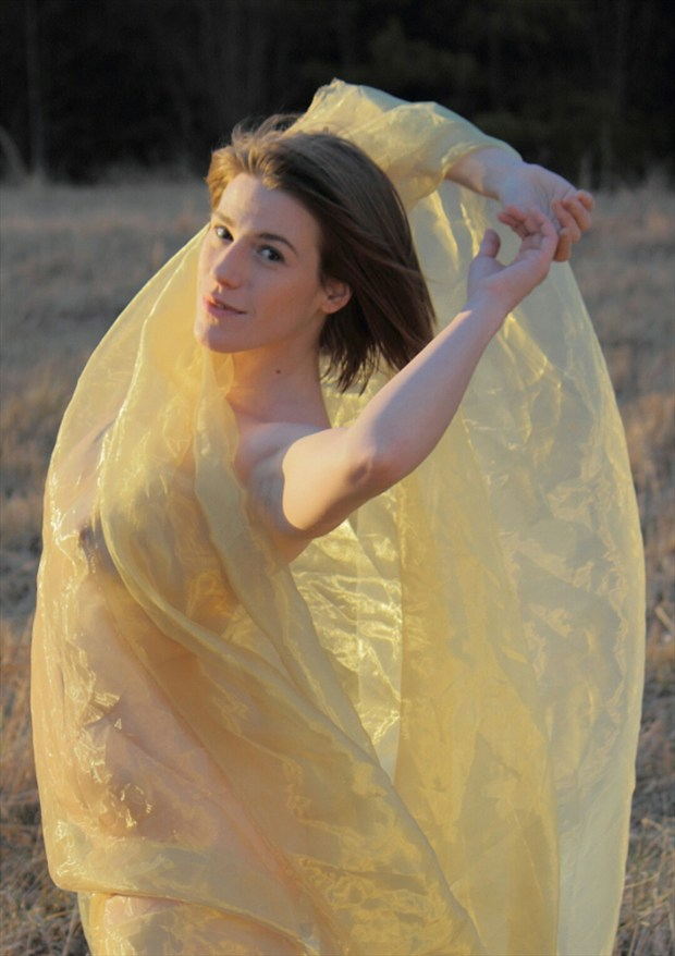Golden Embrace  Artistic Nude Photo by Model Tricia DeAnne