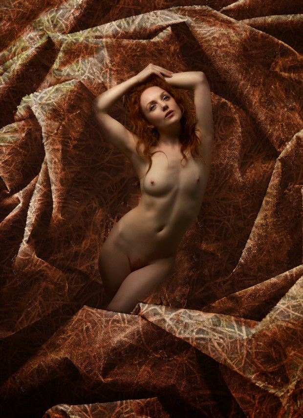 Golden Girl Artistic Nude Photo by Photographer Ray Kirby