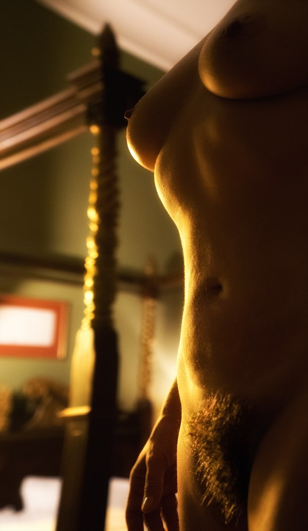 Golden Shine Artistic Nude Photo by Photographer BenGunn