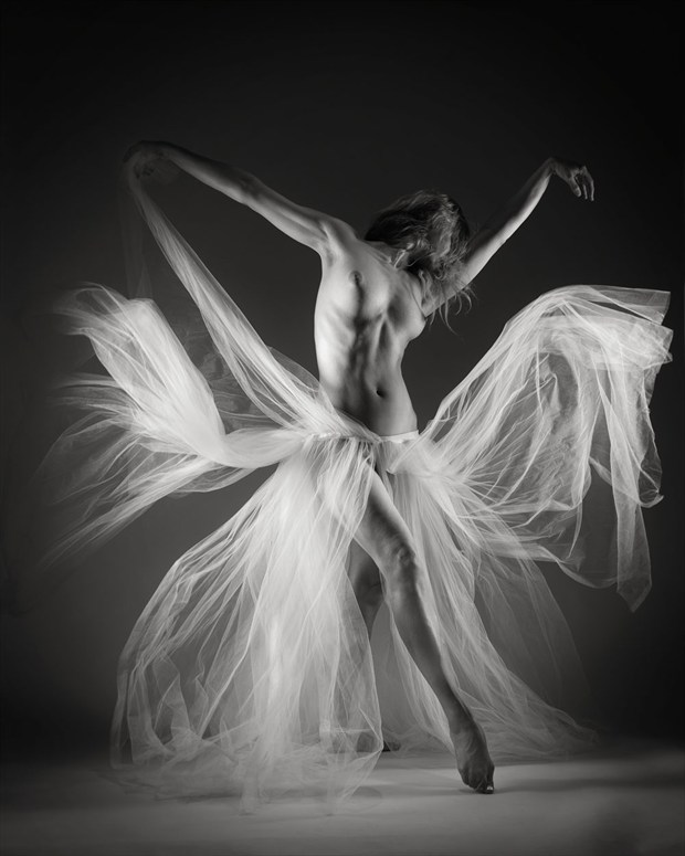 Gossamer Artistic Nude Photo by Photographer John Evans