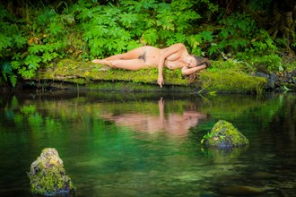 Green Oasis Artistic Nude Photo by Photographer Inge Johnsson