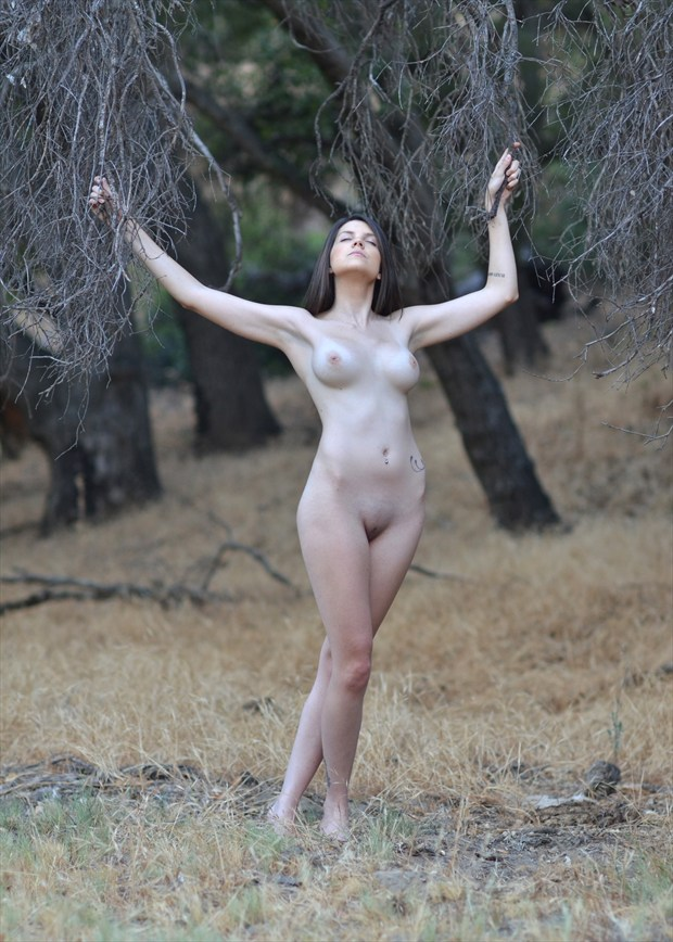 Guided by the Dying Oaks Artistic Nude Photo by Photographer Alan H Bruce