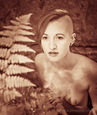 Hannah in ferns  Artistic Nude Artwork by Photographer EAJ photo