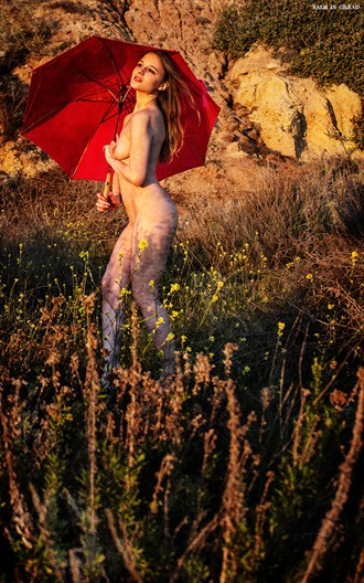 Her red umbrella Nature Photo by Photographer balm in Gilead