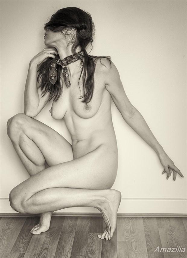 Hidden Artistic Nude Photo by Photographer Amazilia Photography