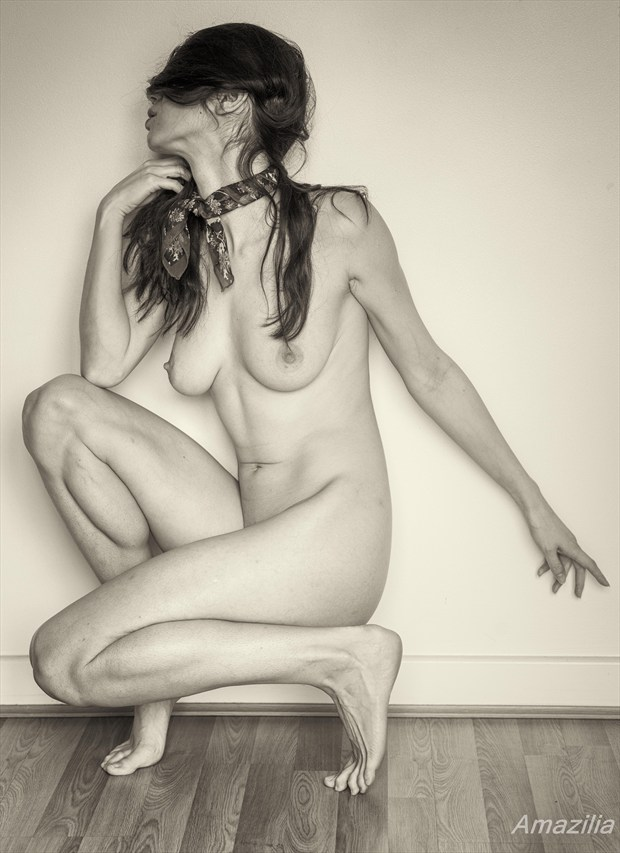 Hidden Artistic Nude Photo by Photographer Amazilia Photography