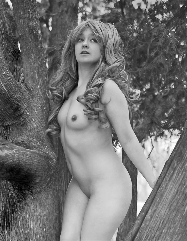 Higher you climb the better the view! Artistic Nude Photo by Photographer Anchorphoto