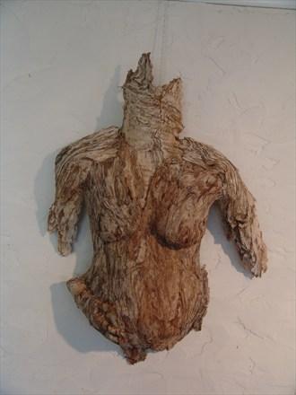 Humanature Series 2014 Artistic Nude Artwork by Artist Kim Perrier