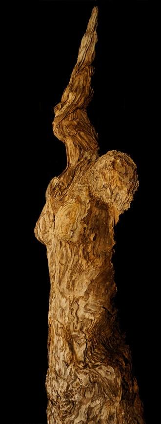 Humanature Series 2015 Artistic Nude Artwork by Artist Kim Perrier