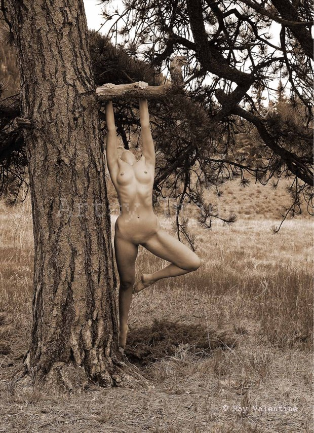 Hung  Ray Valentine Artistic Nude Photo by Model Aurora Red