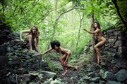I can't see the forest for the trees Artistic Nude Photo by Photographer DaveMylesPhotography