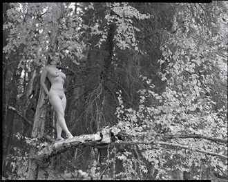 I come here to think ... Artistic Nude Photo by Photographer bthphoto