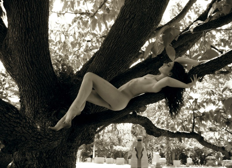 In The Cucumber Magnolia Artistic Nude Photo by Photographer MephistoArt