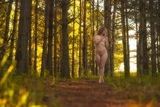 In The Woods Artistic Nude Photo by Photographer mosesimages