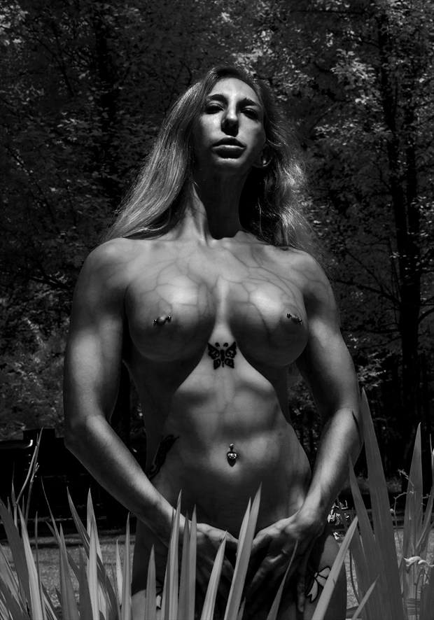 In Vein Artistic Nude Photo by Photographer Al Fess