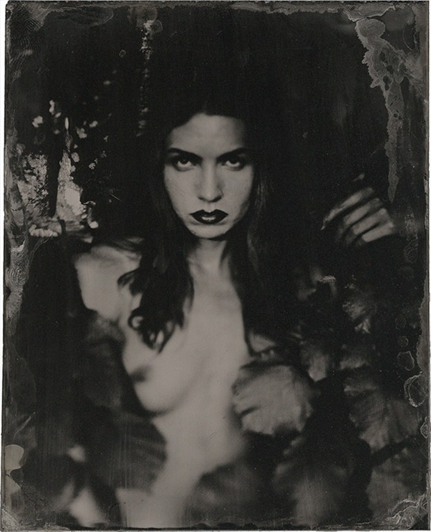 In the Leaves Artistic Nude Artwork by Photographer James Wigger
