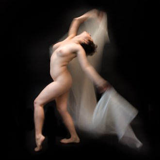 In the Name of Beauty.014 Artistic Nude Photo by Photographer DENNIS WICKES