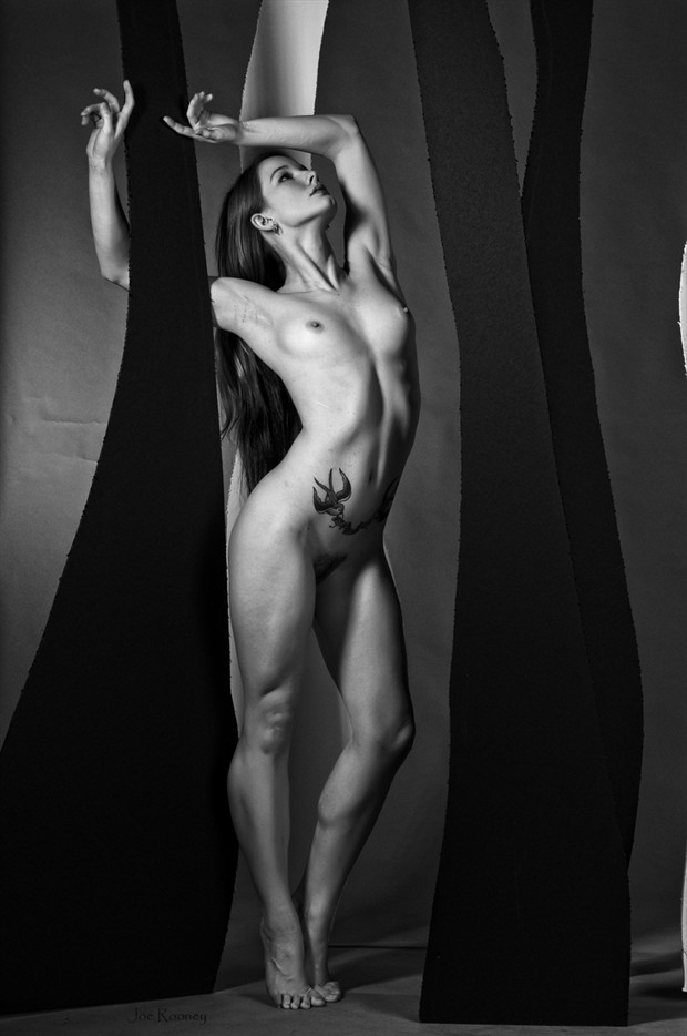 In the Paper Forest Artistic Nude Photo by Photographer JLRImages