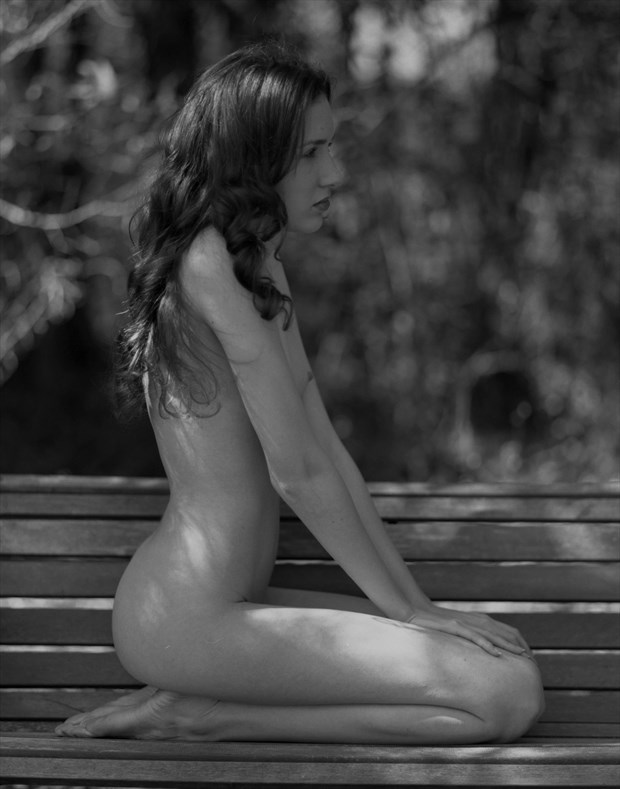 In the Pines Artistic Nude Photo by Photographer Leland Ray