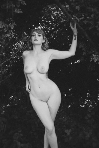 In the Sanctuary Artistic Nude Photo by Model Cat Ropo