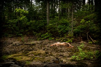 In the Wild Artistic Nude Photo by Photographer mosesimages