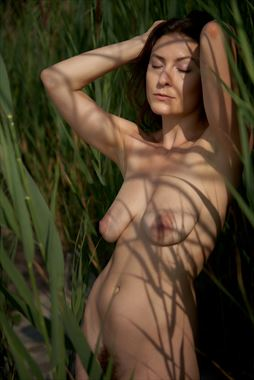 In the Willows Artistic Nude Photo by Model erin elizabeth