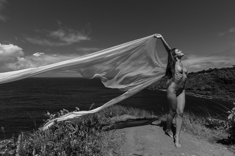 In the Wind Artistic Nude Photo by Photographer Opp_Photog