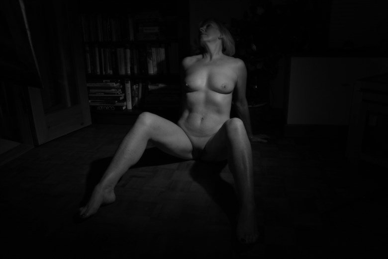 In the library  Artistic Nude Photo by Model Jana