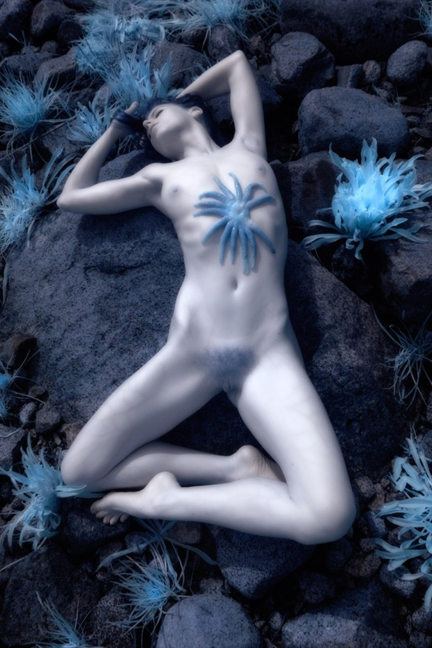Infrared Nude On Beach Artistic Nude Photo by Photographer Phil O%60Donoghue