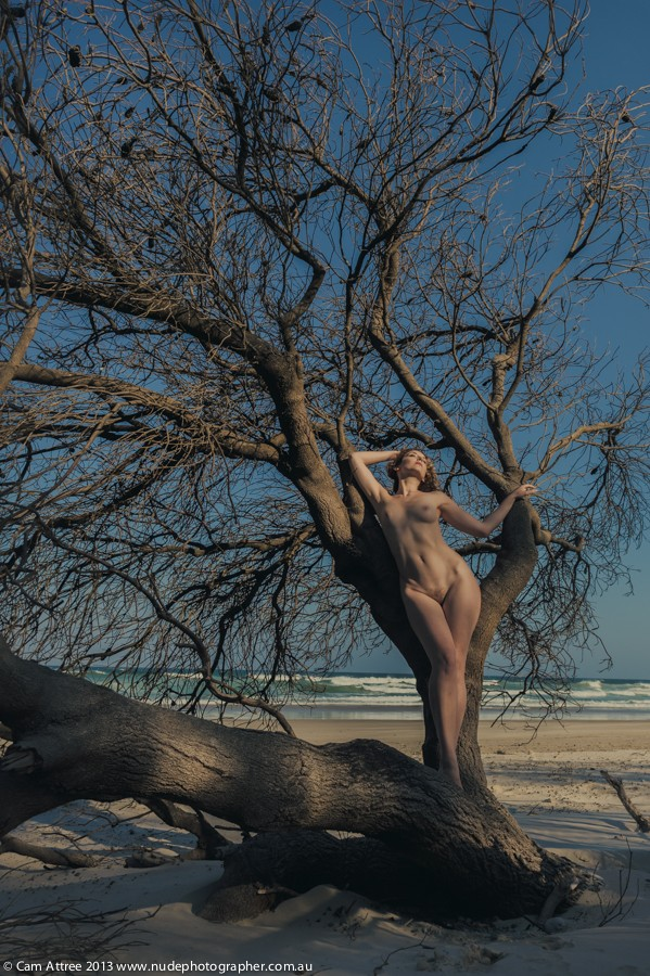 Into the Blue Artistic Nude Photo by Model Ella Rose Muse