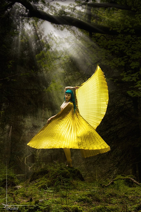 Isis in the Forest Nature Photo by Photographer Kestrel