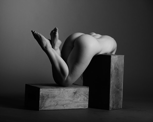 Ivory Flame Artistic Nude Photo by Photographer AndyD10