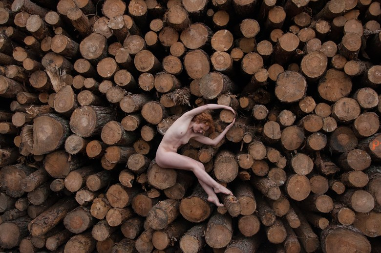 Ivory in the Woodpile Artistic Nude Photo by Photographer Calandra Images