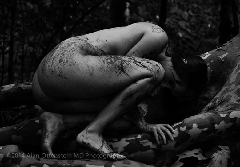 Ivy Lee, Tree Roots Artistic Nude Photo by Photographer AOPhotography